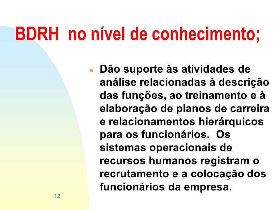 BDRH no nível de conhecimento; n Dão suporte às atividades de análise relacionadas à descrição das funções, ao treinamento e à elaboração de planos de