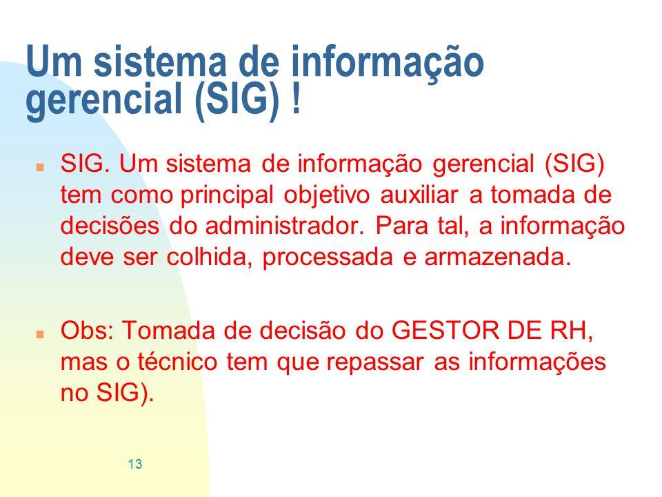 Um sistema de informação gerencial (SIG) ! n SIG. Um sistema de informação gerencial (SIG) tem como principal objetivo auxiliar a tomada de decisões d