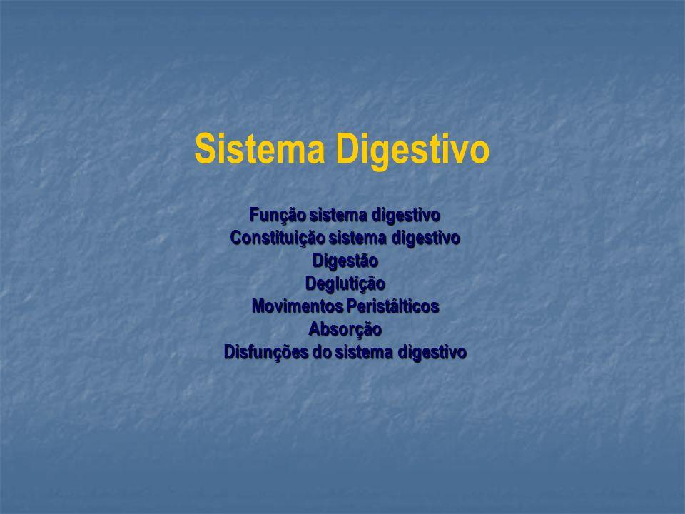 Sistema Digestivo Função sistema digestivo Constituição sistema digestivo DigestãoDeglutição Movimentos Peristálticos Absorção Disfunções do sistema d