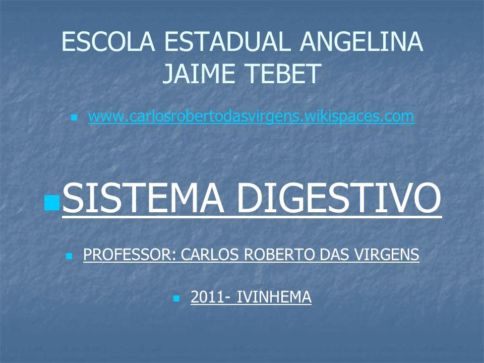 ESCOLA ESTADUAL ANGELINA JAIME TEBET www.carlosrobertodasvirgens.wikispaces.com SISTEMA DIGESTIVO PROFESSOR: CARLOS ROBERTO DAS VIRGENS 2011- IVINHEMA