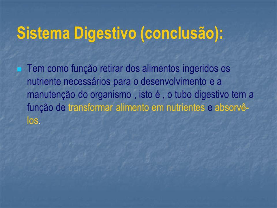 Sistema Digestivo (conclusão): Tem como função retirar dos alimentos ingeridos os nutriente necessários para o desenvolvimento e a manutenção do organ