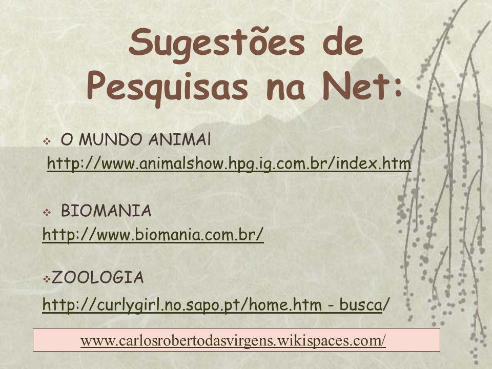 Sugestões de Pesquisas na Net: O MUNDO ANIMAl http://www.animalshow.hpg.ig.com.br/index.htm BIOMANIA http://www.biomania.com.br/ ZOOLOGIA http://curlygirl.no.sapo.pt/home.htm - buscahttp://curlygirl.no.sapo.pt/home.htm - busca/ www.carlosrobertodasvirgens.wikispaces.com/