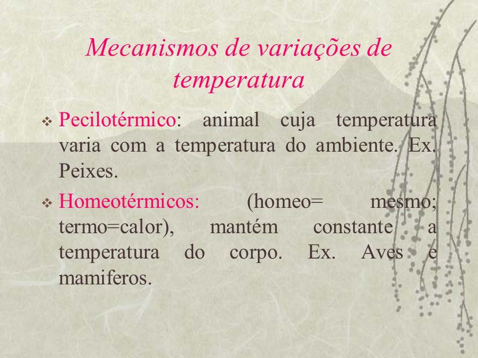 Mecanismos de variações de temperatura Pecilotérmico: animal cuja temperatura varia com a temperatura do ambiente. Ex. Peixes. Homeotérmicos: (homeo=