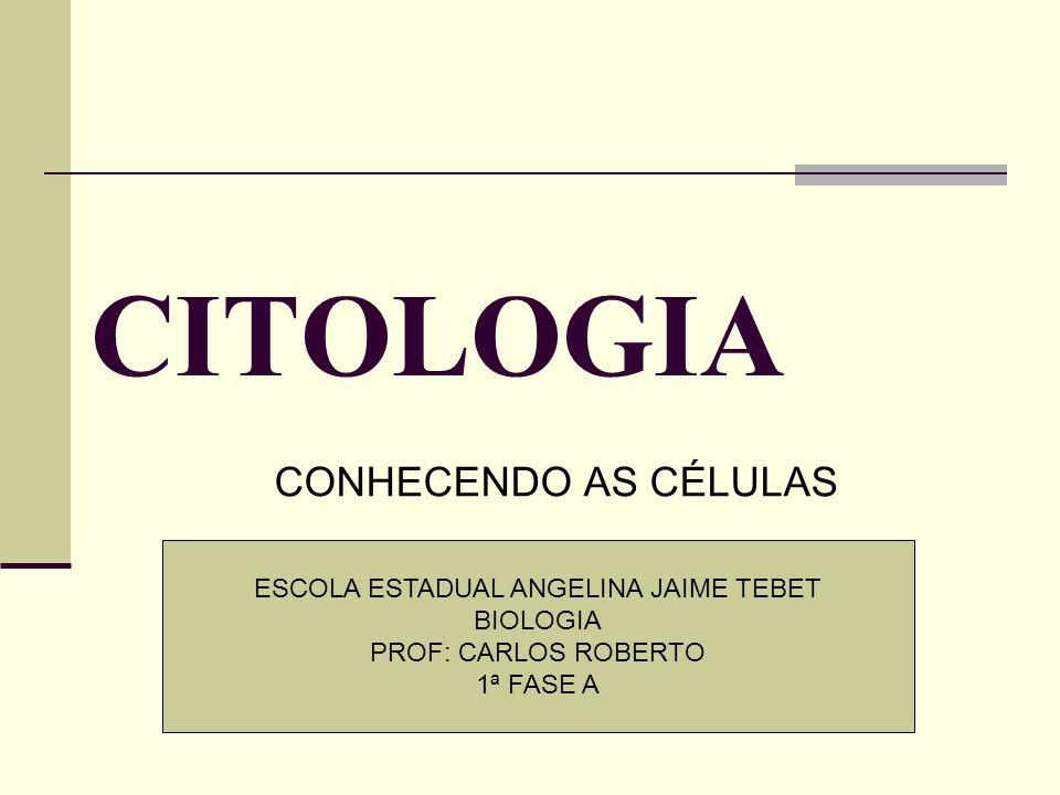 CITOLOGIA CONHECENDO AS CÉLULAS ESCOLA ESTADUAL ANGELINA JAIME TEBET BIOLOGIA PROF: CARLOS ROBERTO 1ª FASE A