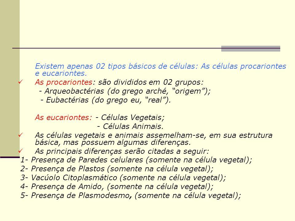 Existem apenas 02 tipos básicos de células: As células procariontes e eucariontes. As procariontes: são divididos em 02 grupos: - Arqueobactérias (do