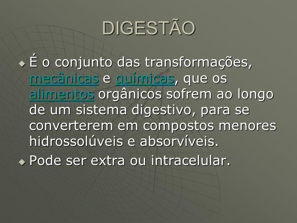 DIGESTÃO É o conjunto das transformações, mecânicas e químicas, que os alimentos orgânicos sofrem ao longo de um sistema digestivo, para se convertere