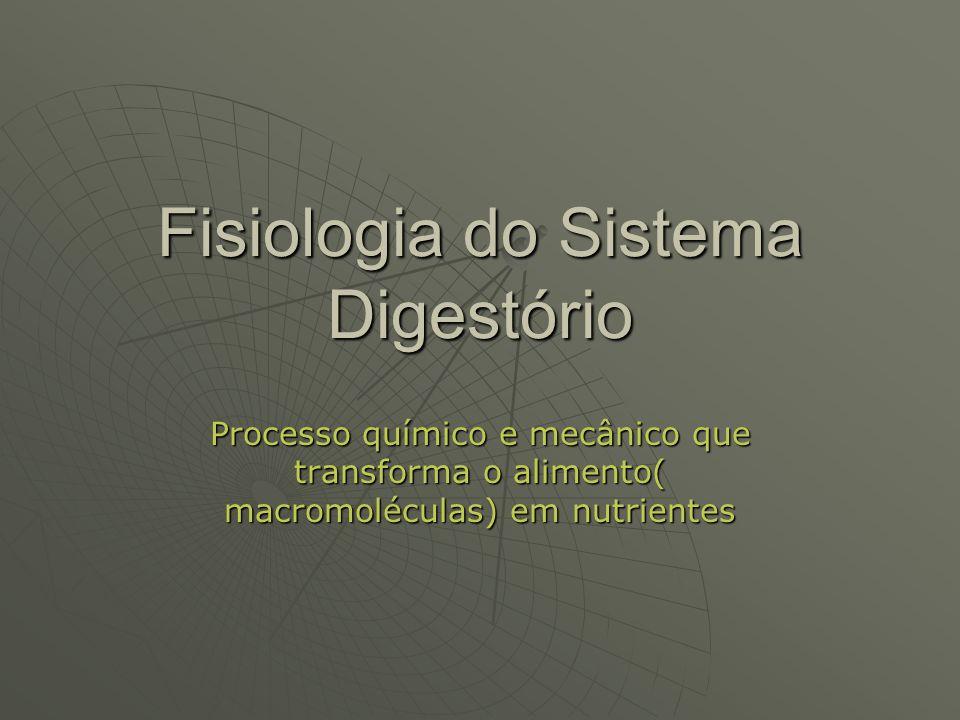 Fisiologia do Sistema Digestório Processo químico e mecânico que transforma o alimento( macromoléculas) em nutrientes