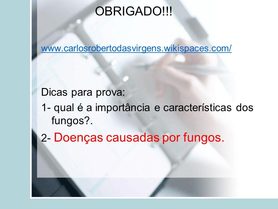 OBRIGADO!!! www.carlosrobertodasvirgens.wikispaces.com/ Dicas para prova: 1- qual é a importância e características dos fungos?. 2- Doenças causadas p