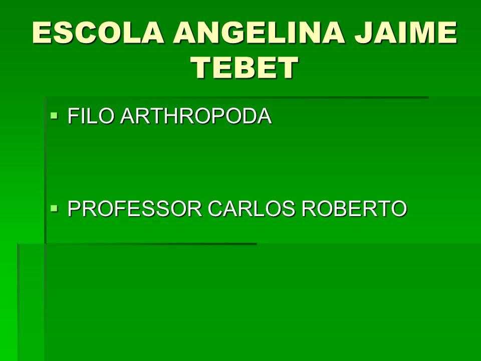 ESCOLA ANGELINA JAIME TEBET FILO ARTHROPODA FILO ARTHROPODA PROFESSOR CARLOS ROBERTO PROFESSOR CARLOS ROBERTO