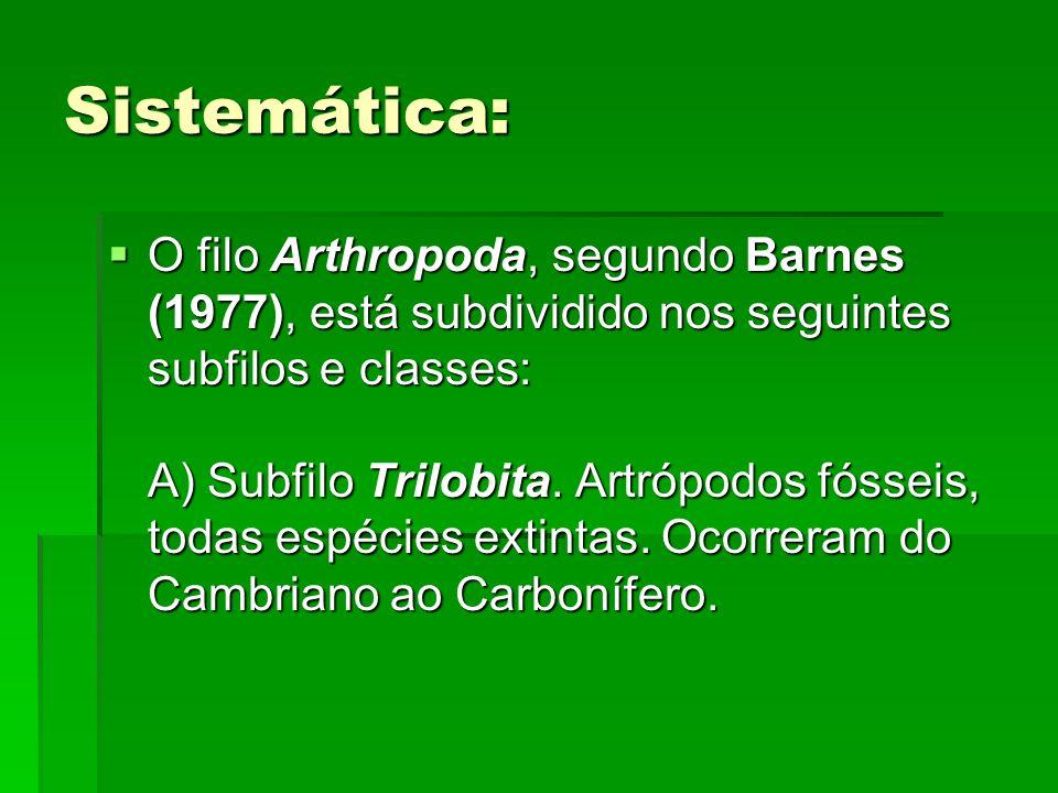 Sistemática: O filo Arthropoda, segundo Barnes (1977), está subdividido nos seguintes subfilos e classes: A) Subfilo Trilobita. Artrópodos fósseis, to
