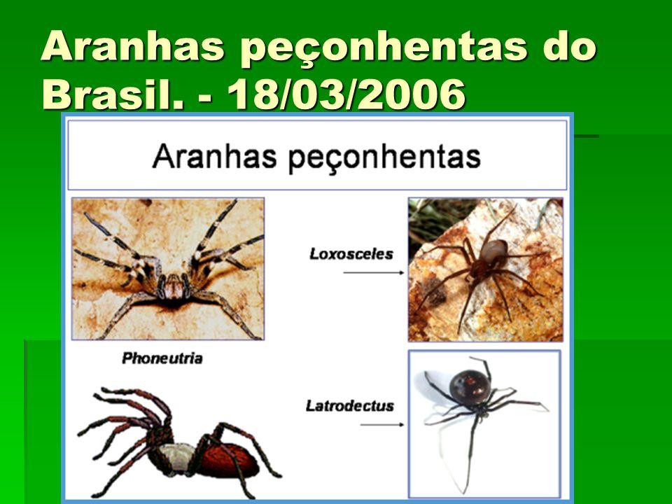 Aranhas peçonhentas do Brasil. - 18/03/2006