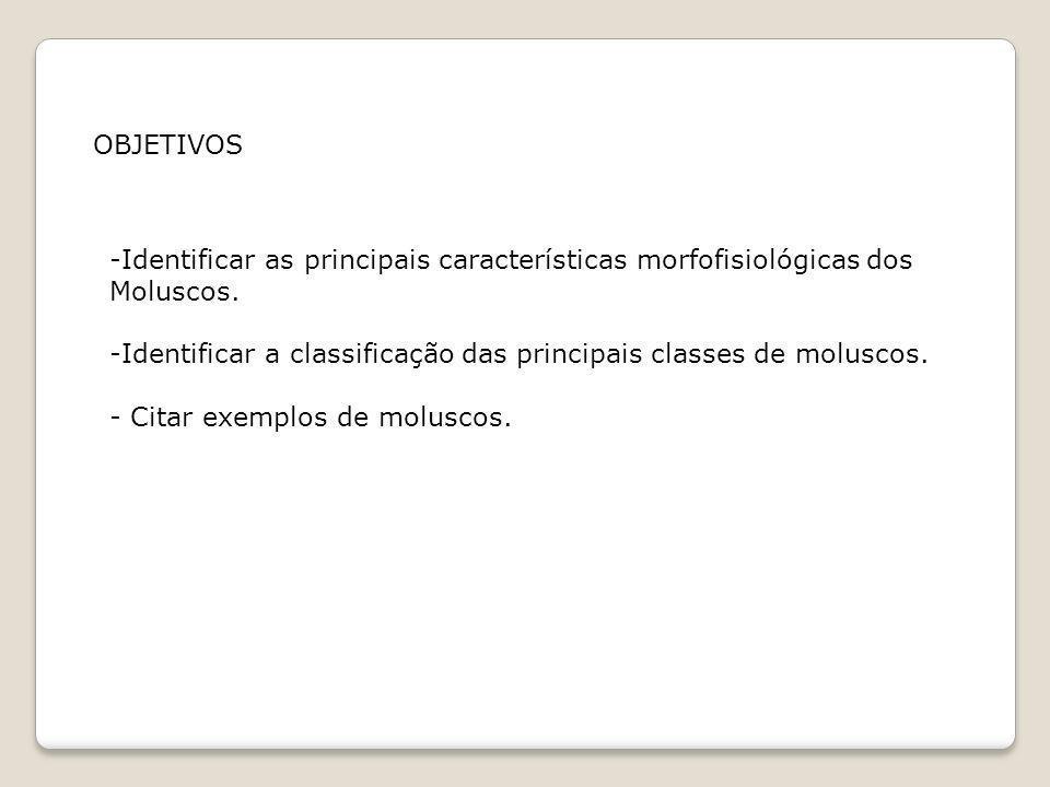 OBJETIVOS -Identificar as principais características morfofisiológicas dos Moluscos. -Identificar a classificação das principais classes de moluscos.