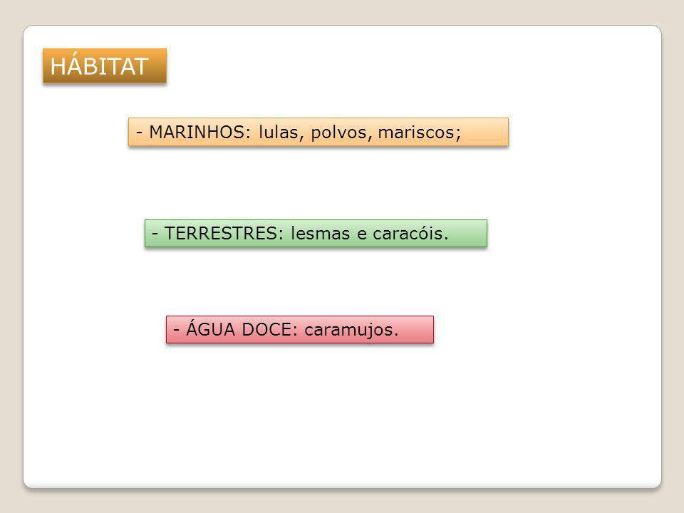HÁBITAT - MARINHOS: lulas, polvos, mariscos; - TERRESTRES: lesmas e caracóis. - ÁGUA DOCE: caramujos.