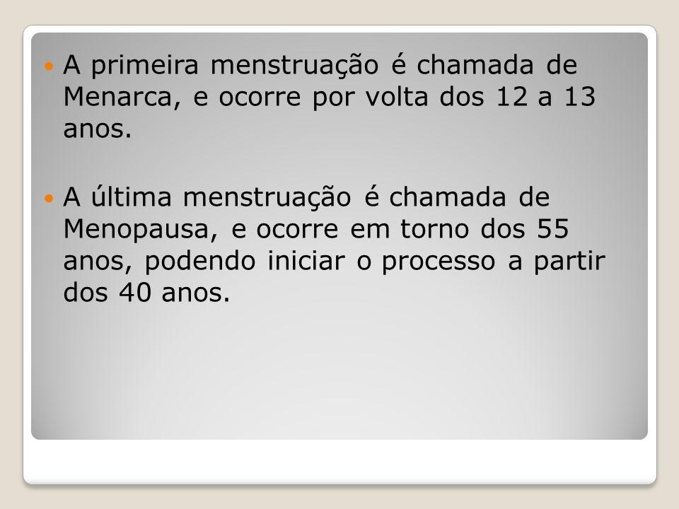 A primeira menstruação é chamada de Menarca, e ocorre por volta dos 12 a 13 anos. A última menstruação é chamada de Menopausa, e ocorre em torno dos 5