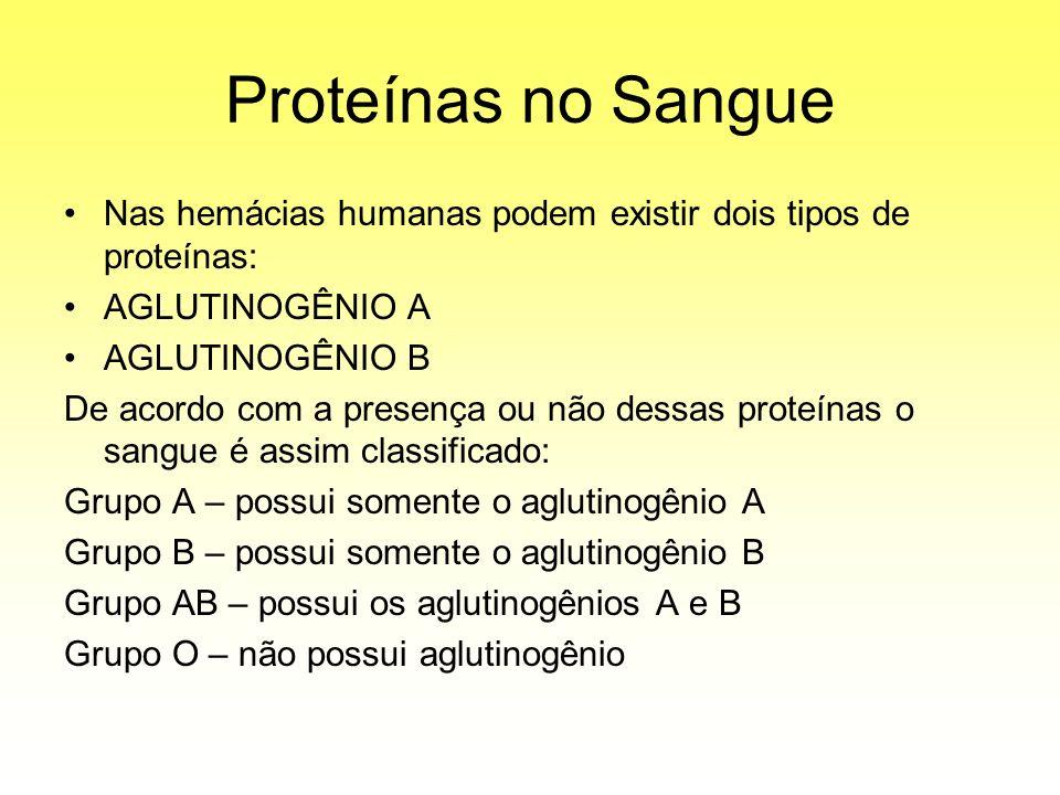 Proteínas no Sangue Nas hemácias humanas podem existir dois tipos de proteínas: AGLUTINOGÊNIO A AGLUTINOGÊNIO B De acordo com a presença ou não dessas proteínas o sangue é assim classificado: Grupo A – possui somente o aglutinogênio A Grupo B – possui somente o aglutinogênio B Grupo AB – possui os aglutinogênios A e B Grupo O – não possui aglutinogênio