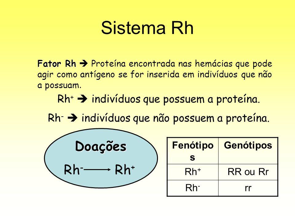 Sistema Rh Fator Rh Fator Rh Proteína encontrada nas hemácias que pode agir como antígeno se for inserida em indivíduos que não a possuam.