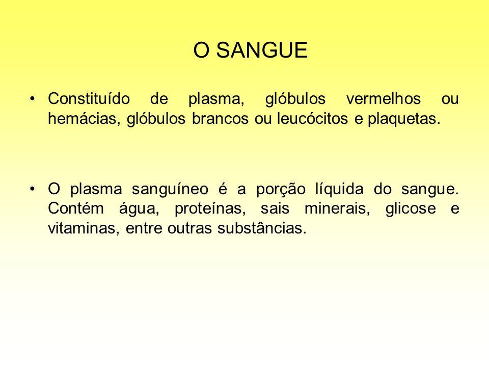 O SANGUE Constituído de plasma, glóbulos vermelhos ou hemácias, glóbulos brancos ou leucócitos e plaquetas.
