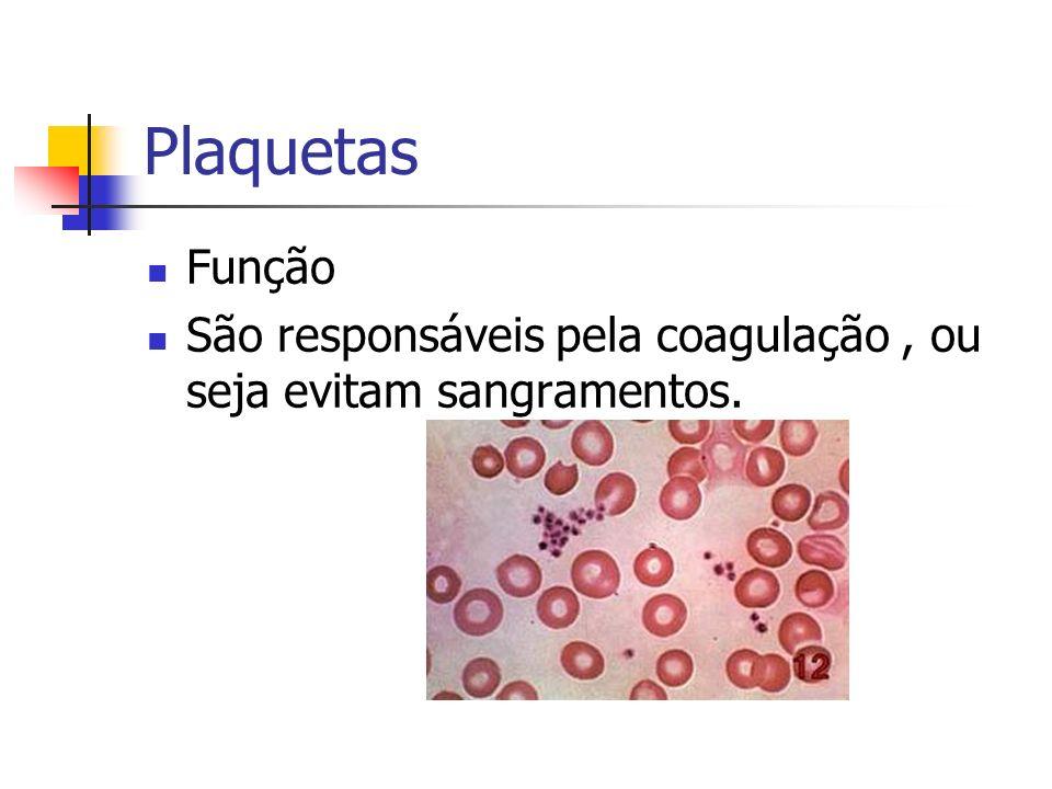 Plaquetas Função São responsáveis pela coagulação, ou seja evitam sangramentos.