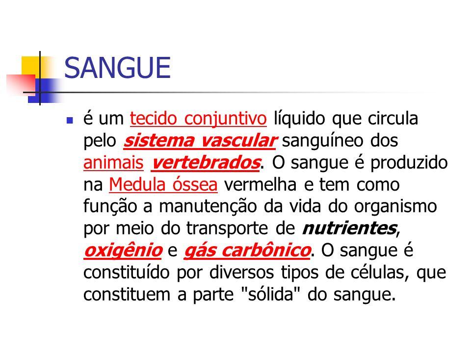 SANGUE é um tecido conjuntivo líquido que circula pelo sistema vascular sanguíneo dos animais vertebrados. O sangue é produzido na Medula óssea vermel