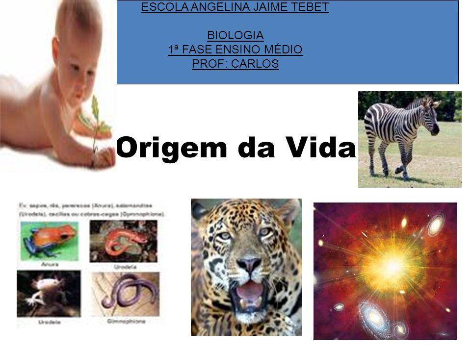 Origem da Vida ESCOLA ANGELINA JAIME TEBET BIOLOGIA 1ª FASE ENSINO MÉDIO PROF: CARLOS