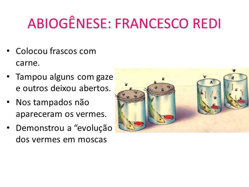 ABIOGÊNESE: FRANCESCO REDI Colocou frascos com carne. Tampou alguns com gaze e outros deixou abertos. Nos tampados não apareceram os vermes. Demonstro