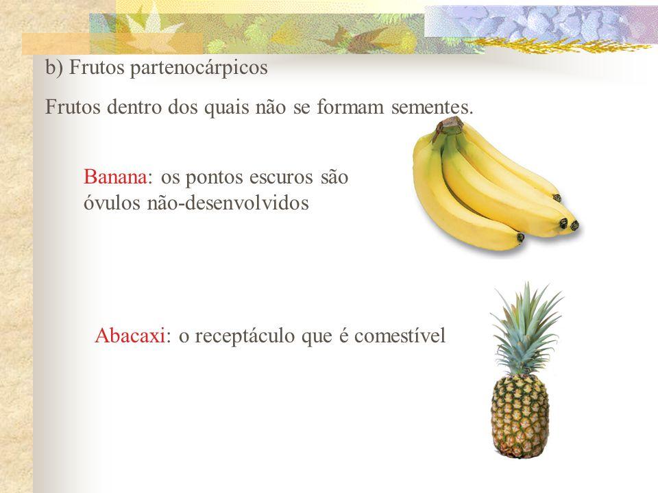 b) Frutos partenocárpicos Frutos dentro dos quais não se formam sementes. Banana: os pontos escuros são óvulos não-desenvolvidos Abacaxi: o receptácul
