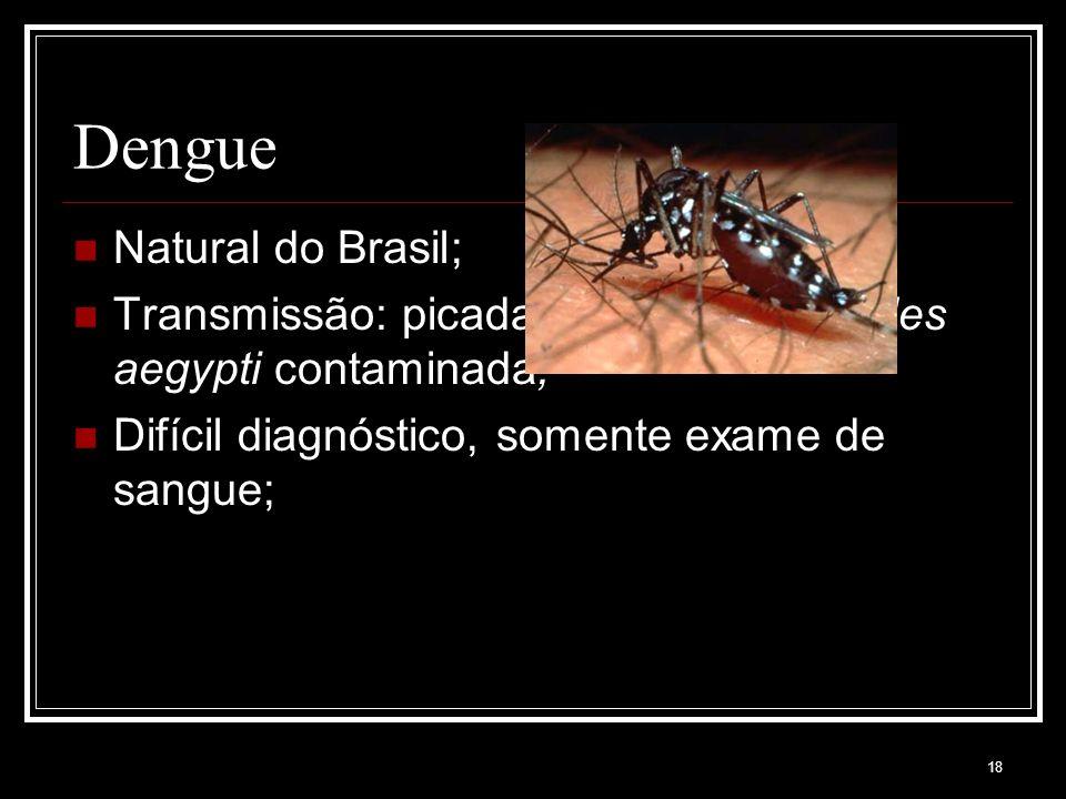 18 Dengue Natural do Brasil; Transmissão: picada da fêmea do Aedes aegypti contaminada; Difícil diagnóstico, somente exame de sangue;