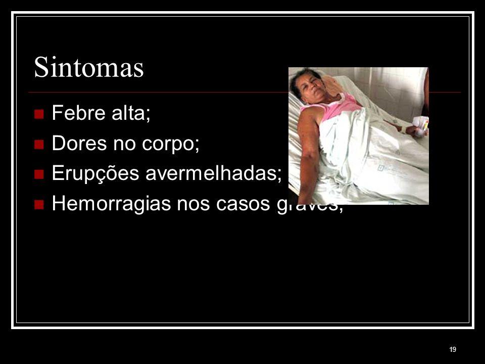19 Sintomas Febre alta; Dores no corpo; Erupções avermelhadas; Hemorragias nos casos graves;
