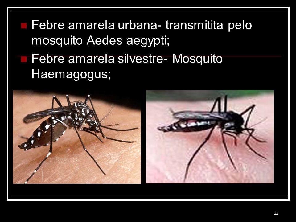 22 Febre amarela urbana- transmitita pelo mosquito Aedes aegypti; Febre amarela silvestre- Mosquito Haemagogus;