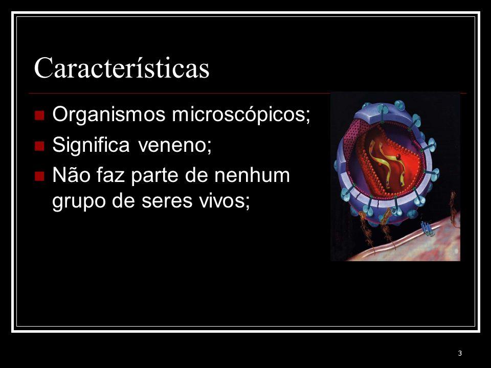 3 Características Organismos microscópicos; Significa veneno; Não faz parte de nenhum grupo de seres vivos;
