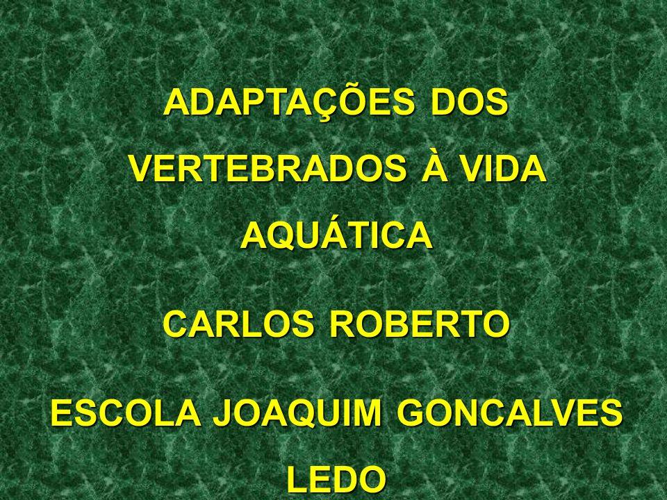 concentração de solutos de alguns vertebrados marinhos (ex: feiticeiras) são similares às da água do mar, o que evita problemas de osmorregulação (eles são isosmóticos).
