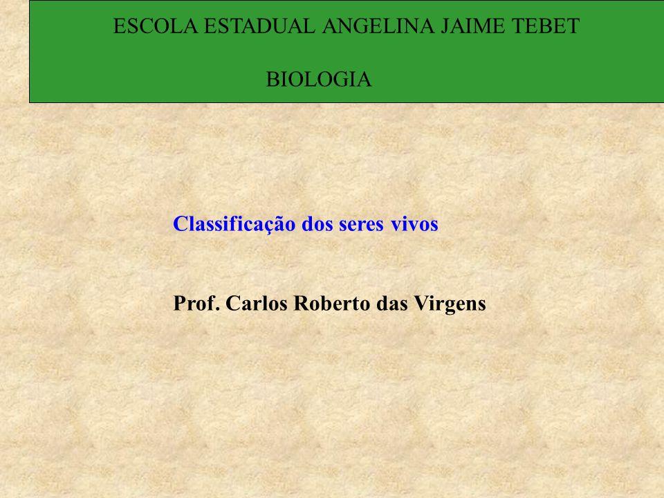 Classificação dos seres vivos Prof. Carlos Roberto das Virgens ESCOLA ESTADUAL ANGELINA JAIME TEBET BIOLOGIA