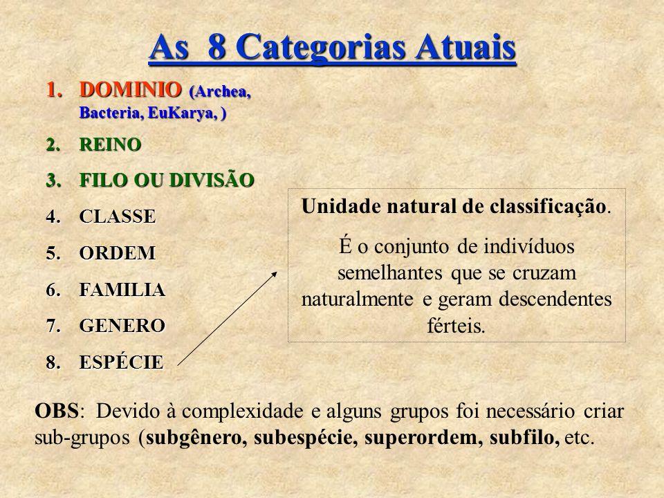 As 8 Categorias Atuais 1.DOMINIO (Archea, Bacteria, EuKarya, ) 2.REINO 3.FILO OU DIVISÃO 4.CLASSE 5.ORDEM 6.FAMILIA 7.GENERO 8.ESPÉCIE Unidade natural