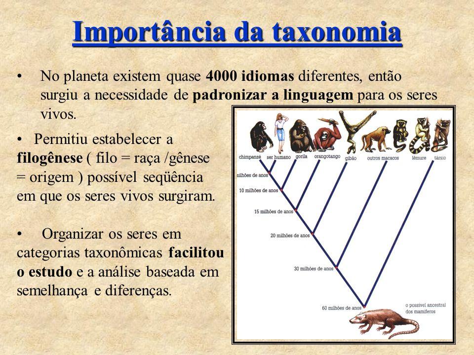 Importância da taxonomia No planeta existem quase 4000 idiomas diferentes, então surgiu a necessidade de padronizar a linguagem para os seres vivos. P