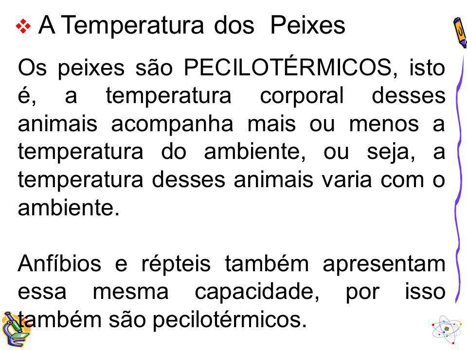 A Temperatura dos Peixes Os peixes são PECILOTÉRMICOS, isto é, a temperatura corporal desses animais acompanha mais ou menos a temperatura do ambiente