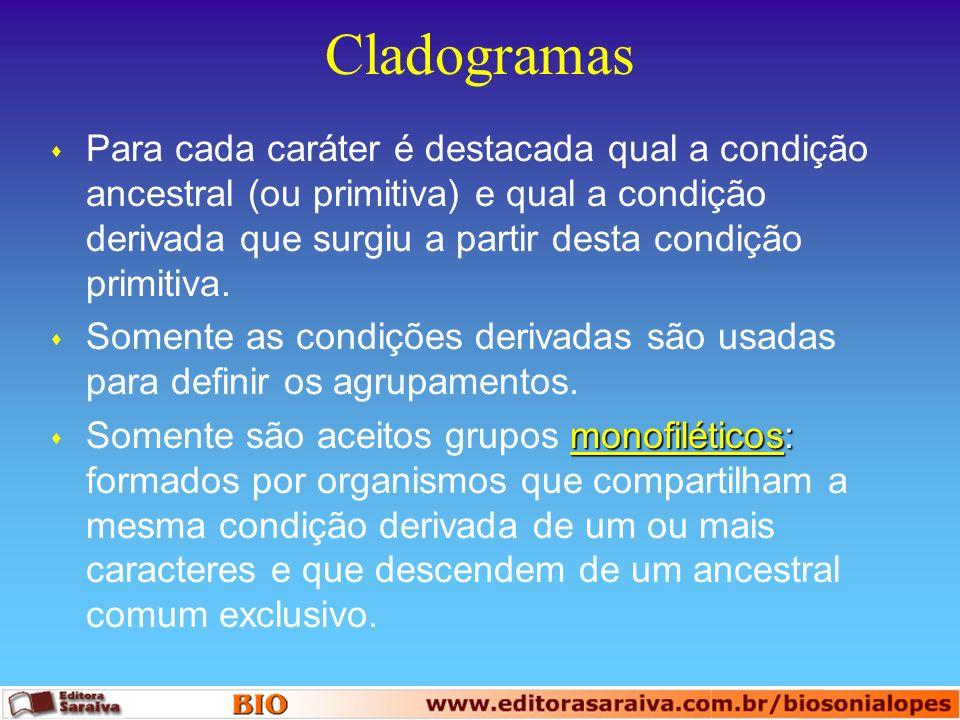 Cladogramas s Partes que compõem um cladograma: raiz, ramos, nós e terminais.