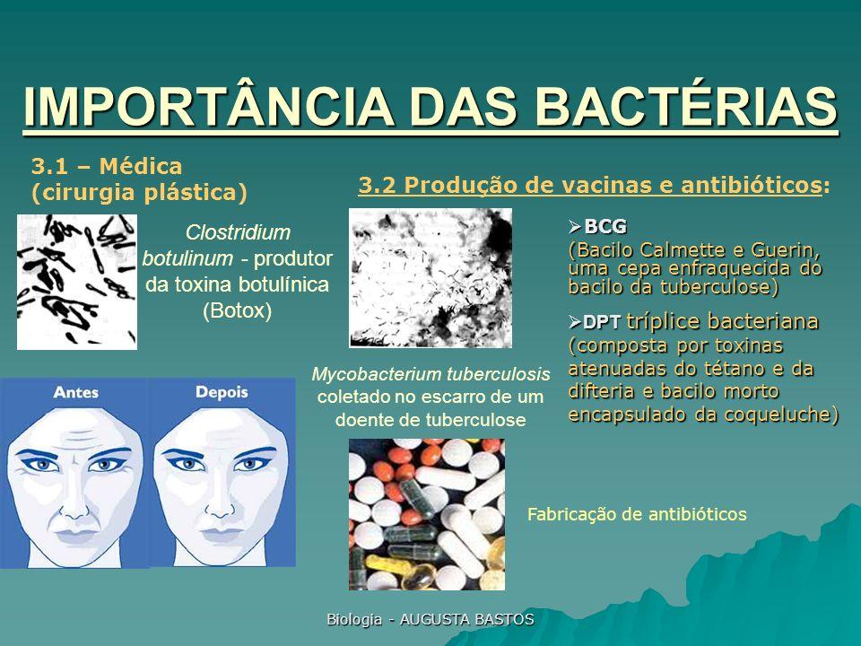 Biologia - AUGUSTA BASTOS Clostridium botulinum - produtor da toxina botulínica (Botox) IMPORTÂNCIA DAS BACTÉRIAS 3.1 – Médica (cirurgia plástica) Myc