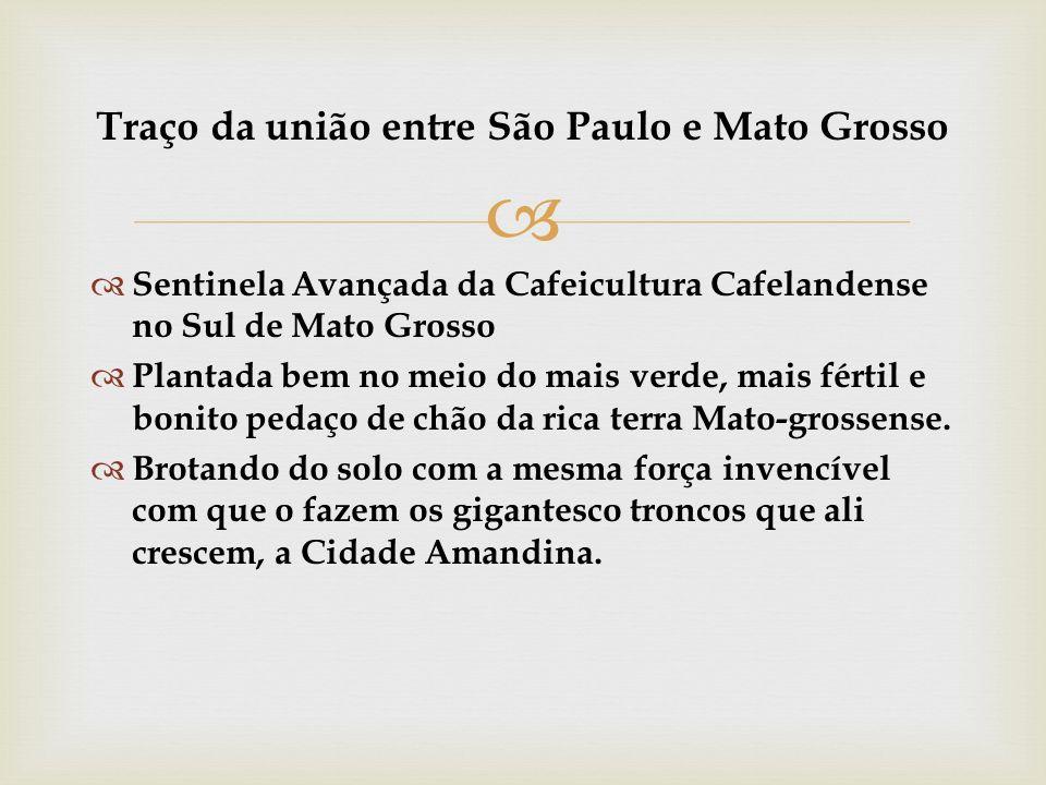 Sentinela Avançada da Cafeicultura Cafelandense no Sul de Mato Grosso Plantada bem no meio do mais verde, mais fértil e bonito pedaço de chão da rica