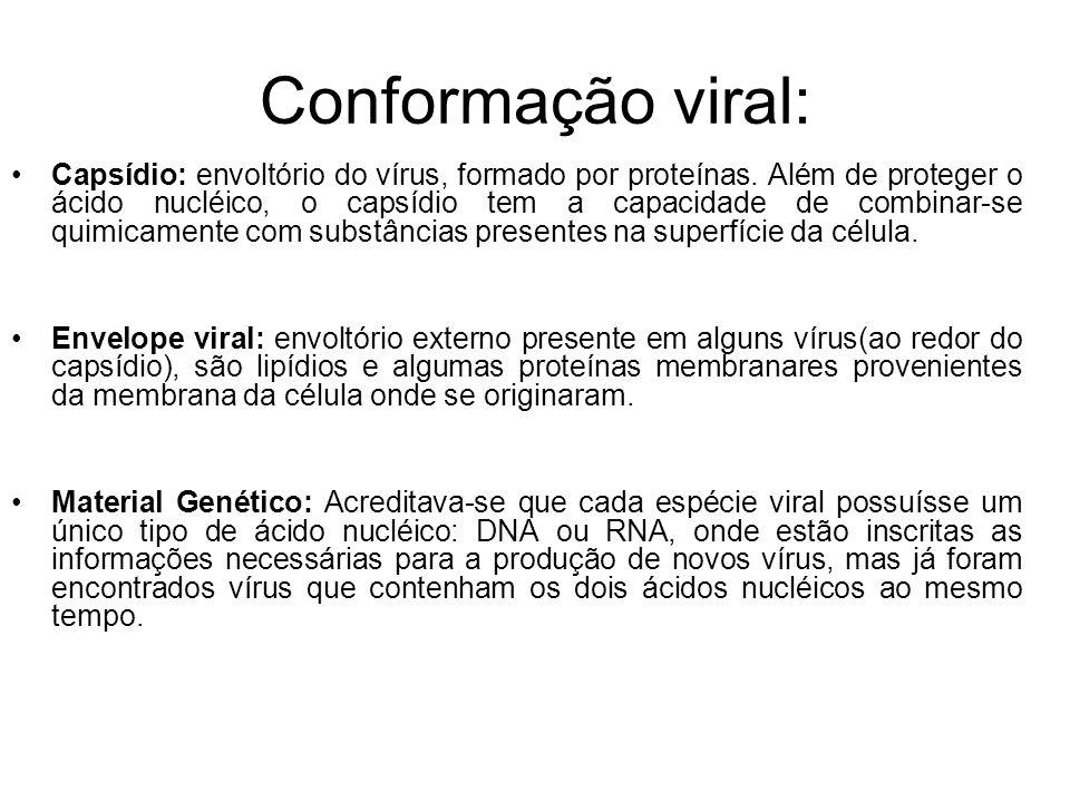 Conformação viral: Capsídio: envoltório do vírus, formado por proteínas. Além de proteger o ácido nucléico, o capsídio tem a capacidade de combinar-se