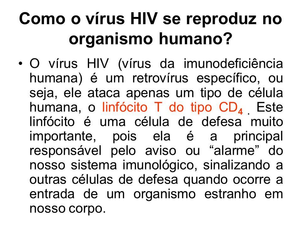 Como o vírus HIV se reproduz no organismo humano? O vírus HIV (vírus da imunodeficiência humana) é um retrovírus específico, ou seja, ele ataca apenas