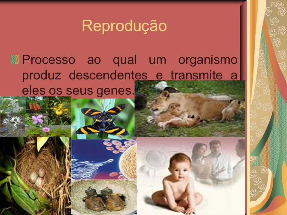 Reprodução Processo ao qual um organismo produz descendentes e transmite a eles os seus genes.