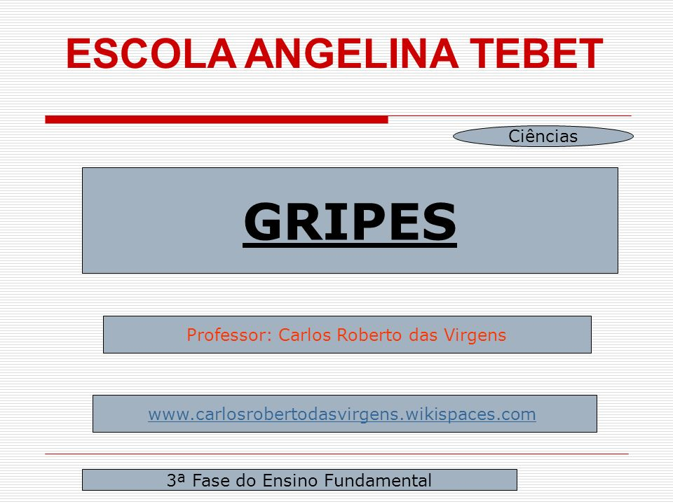 ESCOLA ANGELINA TEBET GRIPES Professor: Carlos Roberto das Virgens   3ª Fase do Ensino Fundamental Ciências