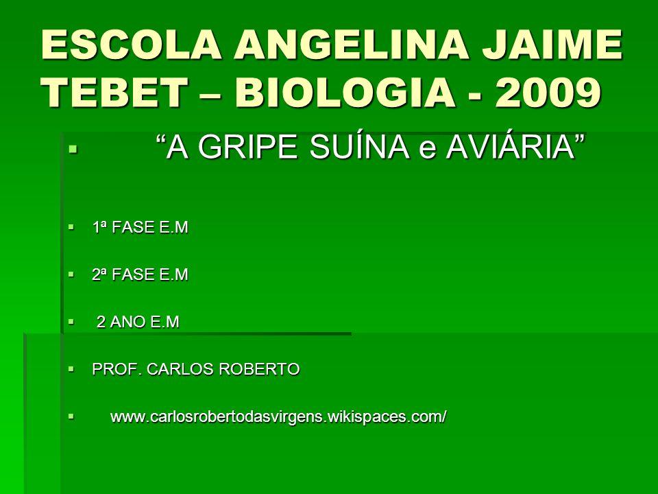 ESCOLA ANGELINA JAIME TEBET – BIOLOGIA - 2009 A GRIPE SUÍNA e AVIÁRIA A GRIPE SUÍNA e AVIÁRIA 1ª FASE E.M 1ª FASE E.M 2ª FASE E.M 2ª FASE E.M 2 ANO E.