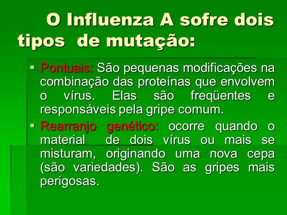 O Influenza A sofre dois tipos de mutação: Pontuais: São pequenas modificações na combinação das proteínas que envolvem o vírus. Elas são freqüentes e