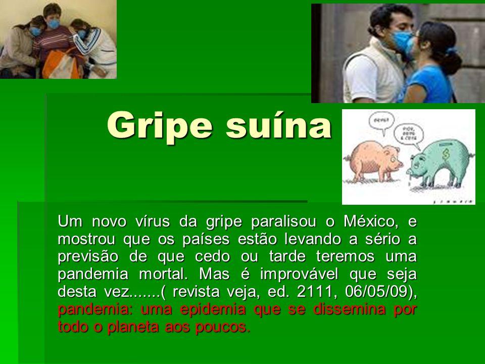 A GRIPE SUÍNA A GRIPE SUÍNA Assim batizada por ter o porco como principal hospedeiro do vírus.