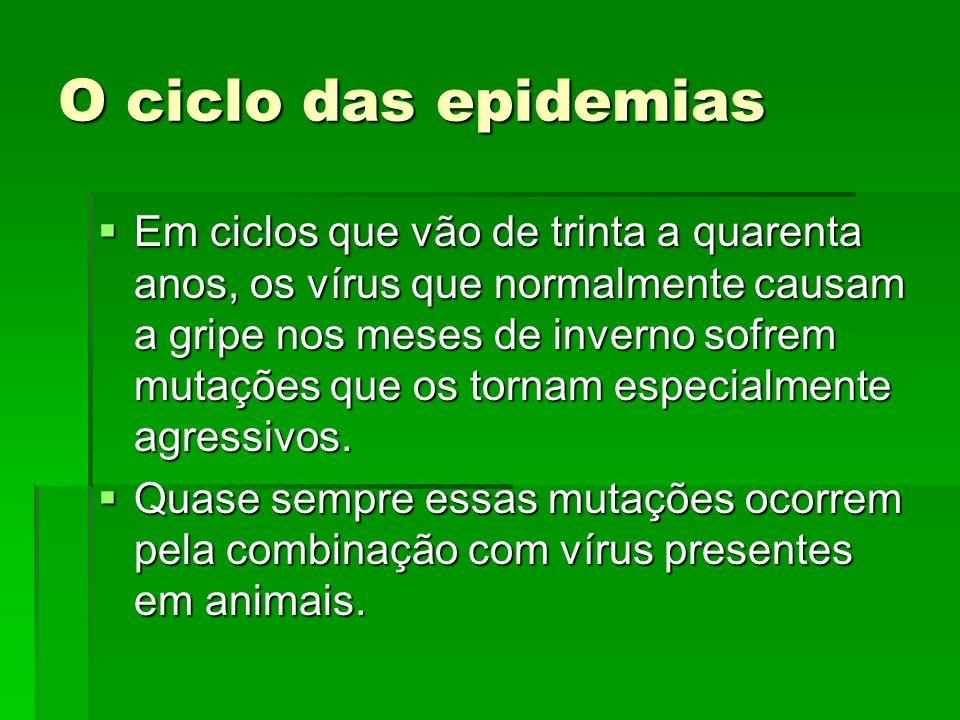 O ciclo das epidemias Em ciclos que vão de trinta a quarenta anos, os vírus que normalmente causam a gripe nos meses de inverno sofrem mutações que os