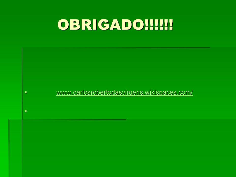 OBRIGADO!!!!!! OBRIGADO!!!!!! www.carlosrobertodasvirgens.wikispaces.com/ www.carlosrobertodasvirgens.wikispaces.com/www.carlosrobertodasvirgens.wikis