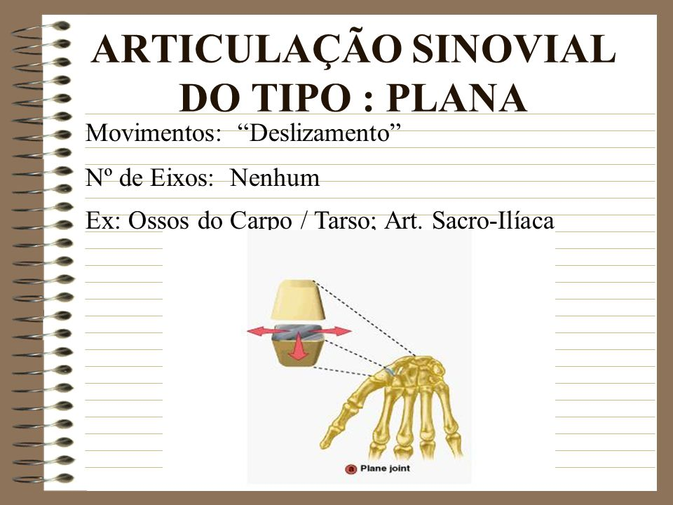 ARTICULAÇÃO SINOVIAL DO TIPO : PLANA Ex: Ossos do Carpo / Tarso; Art.