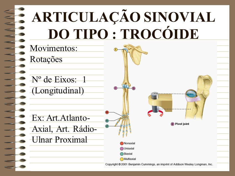 ARTICULAÇÃO SINOVIAL DO TIPO : TROCÓIDE Ex: Art.Atlanto- Axial, Art. Rádio- Ulnar Proximal Movimentos: Rotações Nº de Eixos: 1 (Longitudinal)