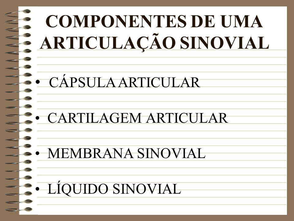 COMPONENTES DE UMA ARTICULAÇÃO SINOVIAL CÁPSULA ARTICULAR CARTILAGEM ARTICULAR MEMBRANA SINOVIAL LÍQUIDO SINOVIAL